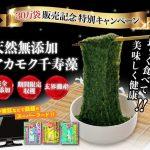 アカモク千寿藻 – 海の自然薯と呼ばれる栄養豊富なスーパーフード!効果の口コミは?